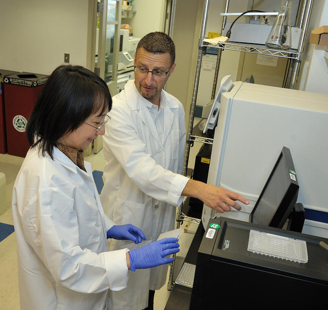Dr. Gadina (right) discusses research results with research assistant Wanxia Tsai in the lab of the Translational Immunology Section (TIS).