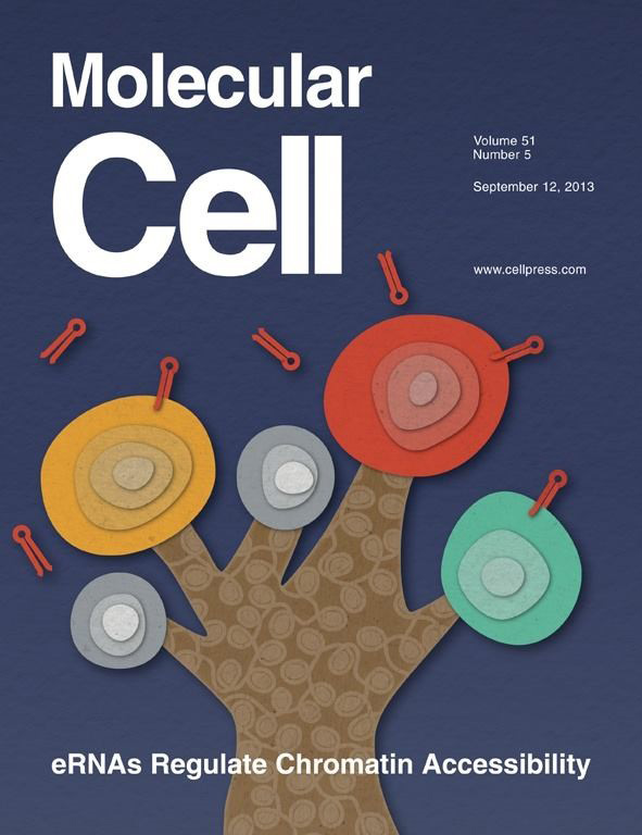 Molecular Cell Cover - 12 September 2013 Volume 51 Issue 5