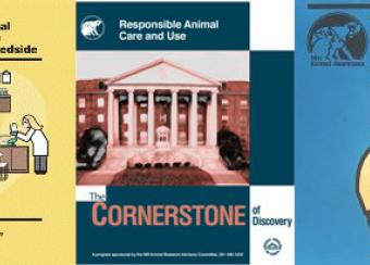 Laboratory Animal Care and Use